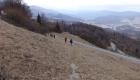 Nordic walking 007
